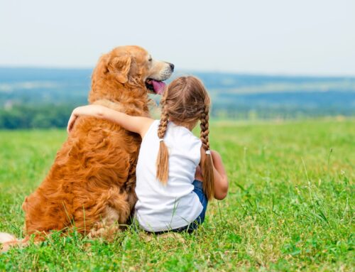 Deca prirode i odrođeno čovečanstvo